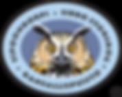 Oivallusvaara Metsähallitus Sipoonkorven kansallispuisto