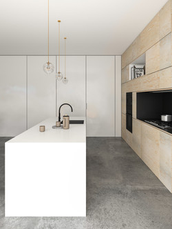 Kitchen - concept design