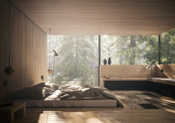 Revugia - Lichtecht concept design