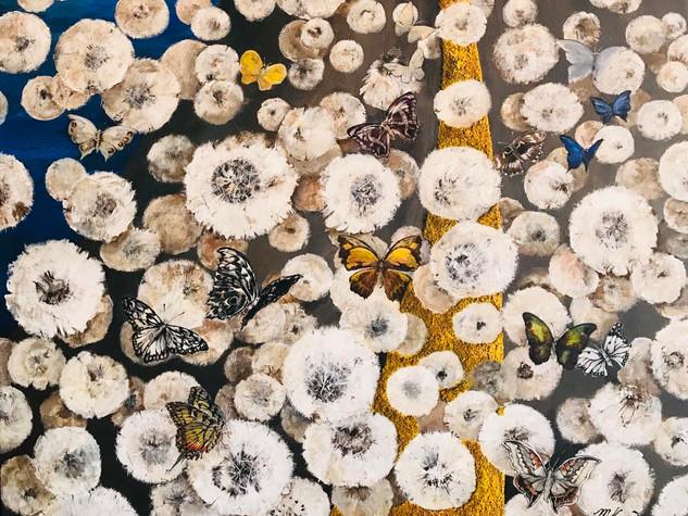 A Dandelion Rhapsody