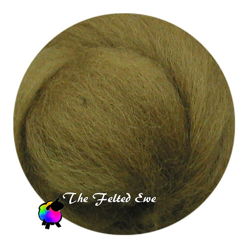 DR39 Enchanted Moss Wool Roving