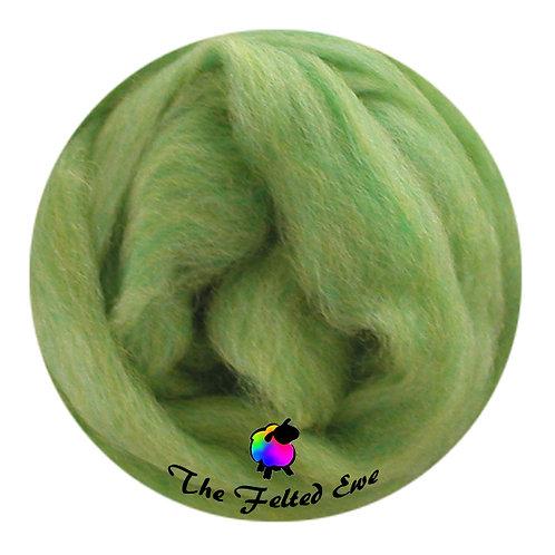 ES10 Woodland Fern Wool Sliver