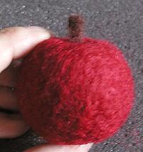 Apple 033.jpg