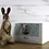 Thumbnail: Romeo the Rabbit Needle Felting Kit
