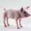 Thumbnail: Pippin the Pig Needle Felting Kit