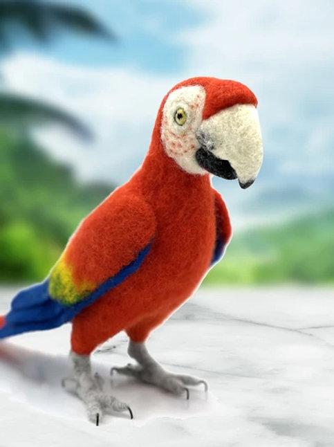 Pablo the Parrot Needle Felting Kit