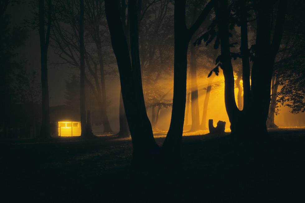 Midnight Expedition