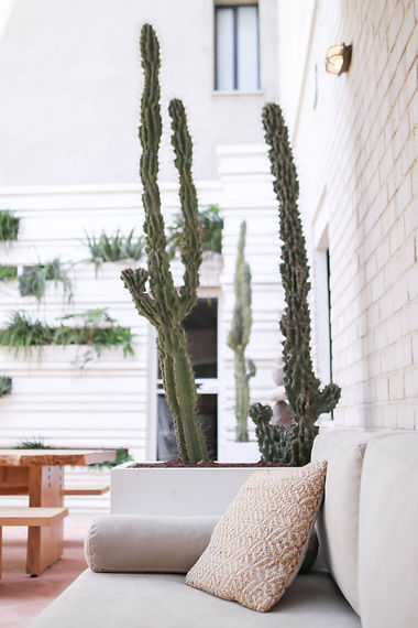 urban oasis by Craft & Bloom