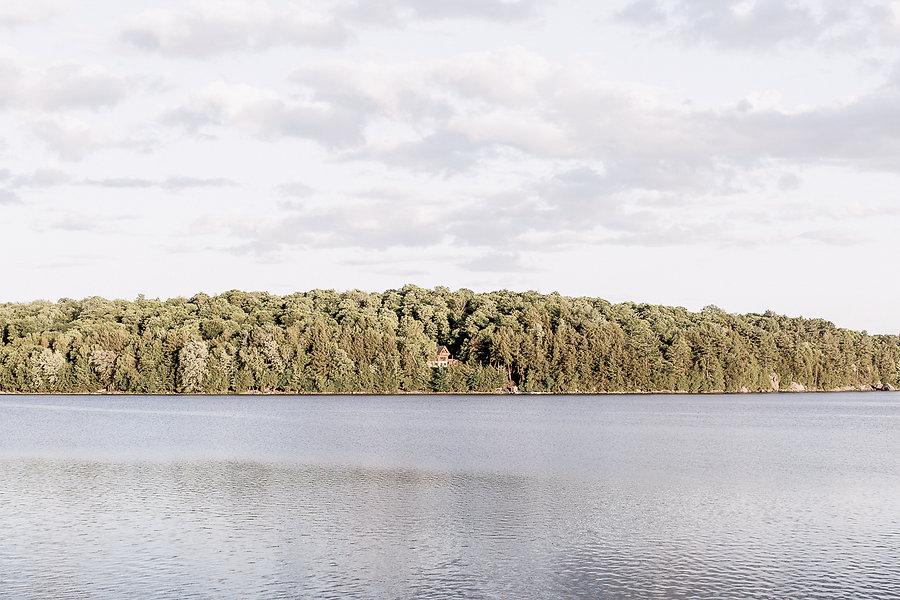Muskoka Cabin by Craft & Bloom view
