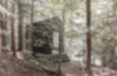 Muskoka Cabin by Craft & Bloom