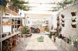 patio design craft and bloom