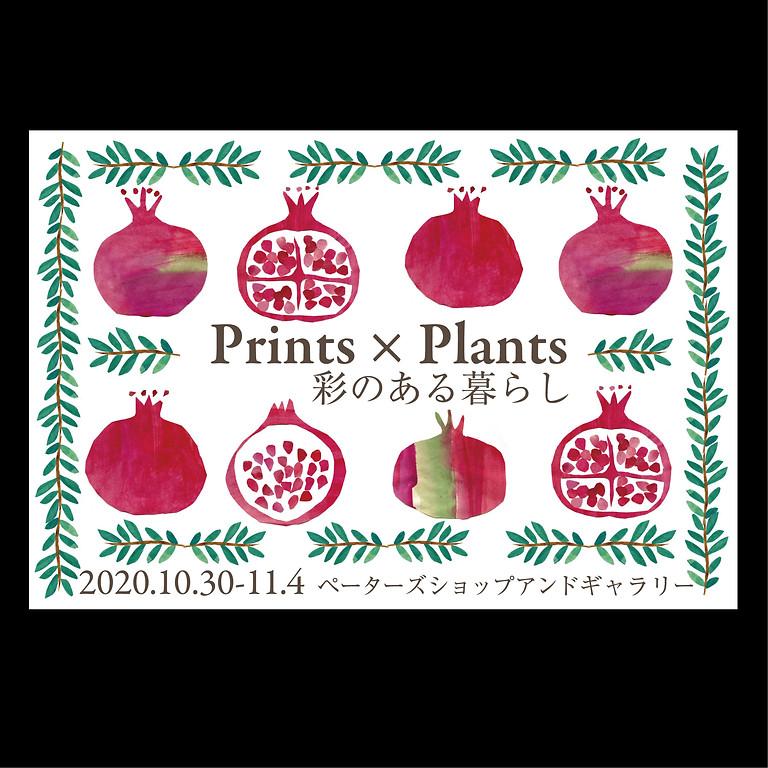 Prints× Plants 彩のある暮らし 10.30-11.4