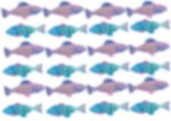 coastal-dotfish.jpg
