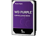 1TB Purple Hard Drive