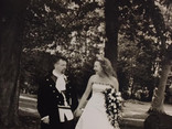 Wild Woodland Weddings