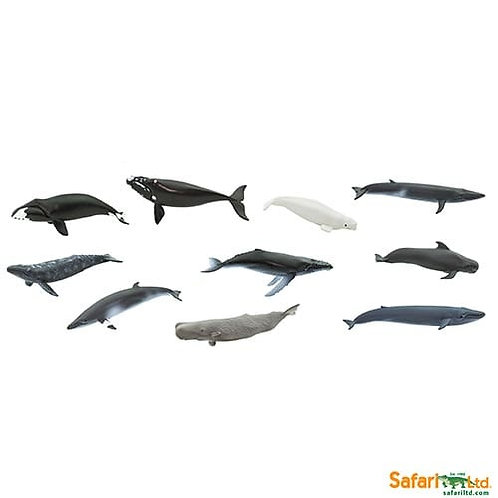 Safari Ltd – Whales Toob 100072