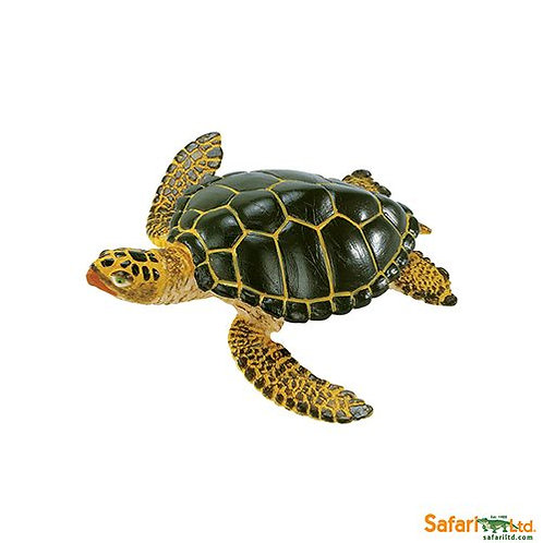 Safari Ltd – Green Sea Turtle (Wild Safari Sea Life) 274329