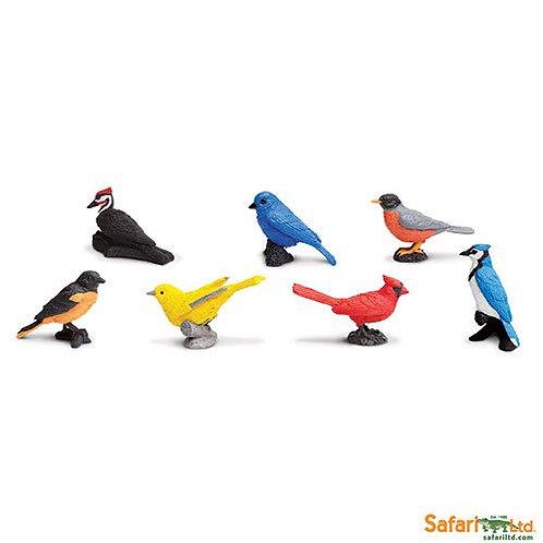 Safari Ltd – Backyard Birds Toob 678304