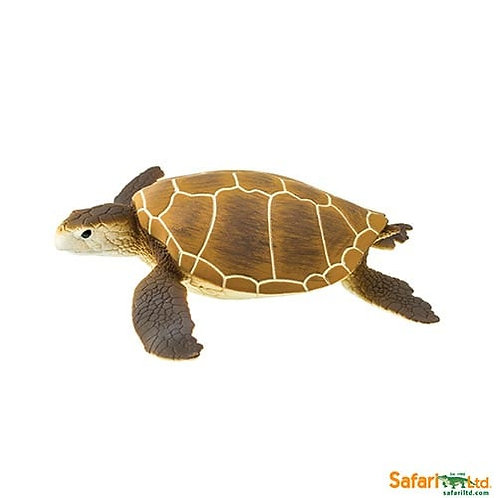 Safari Ltd – Green Sea Turtle (Wild Safari Sea Life) 202329