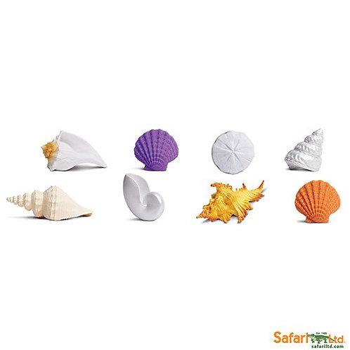 Safari Ltd – Seashells Toob