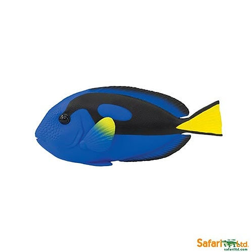 Safari Ltd – Blue Tang Incredible Creatures 100039