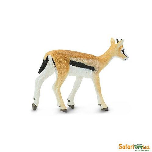 Safari Ltd – Thomson's Gazelle (Wild Safari) 227029