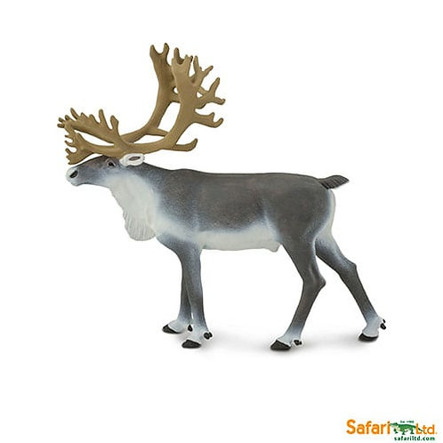Safari Ltd – Caribou (Wild Safari – North American Wildlife) 182229