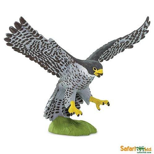 Safari Ltd – Peregrine Falcon (Wings of the World Birds) 100094