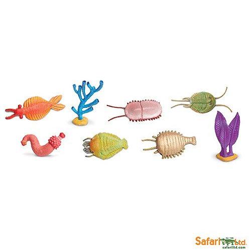 Safari Ltd – Cambrian Life Toob 677104