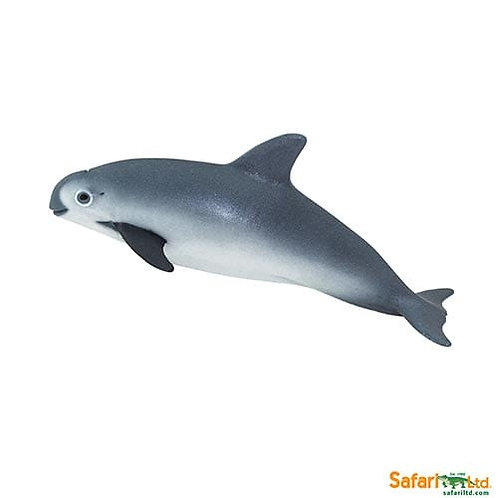 Safari Ltd – Vaquita Porpoise (Wild Safari Sea Life) 100101