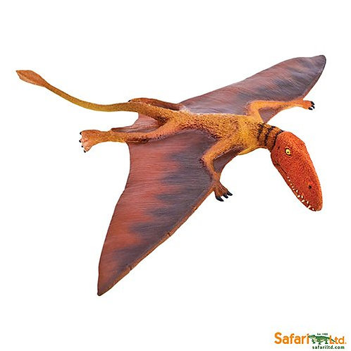 Safari Ltd – Dimorphodon (Wild Safari – Prehistoric World) 304729