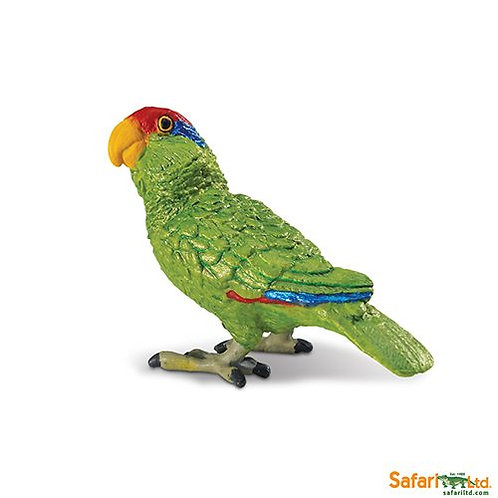 Safari Ltd – Green-cheeked Amazon Parrot (Wings Of The World Birds) 263729