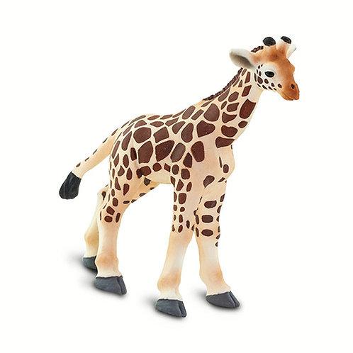 Safari Ltd – Giraffe Baby (Wild Safari) 100422