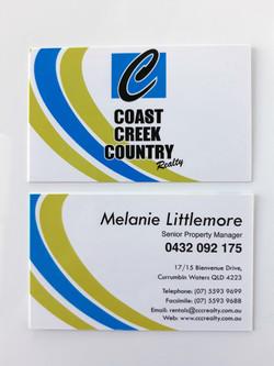 Matt Laminated Business Cards
