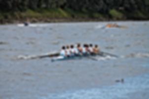 Clifton rowing Waitara, New Plymouth, Taranaki