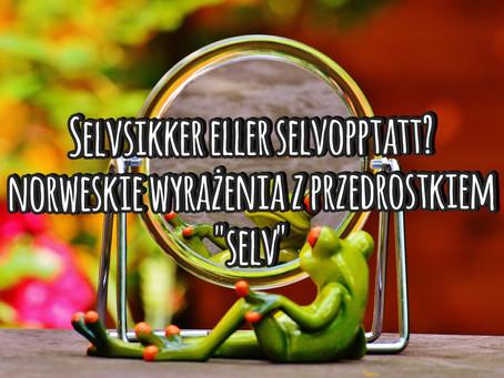 """Selvstendig eller selvopptatt? Norweskie wyrażenia z prefiksem """"selv"""""""