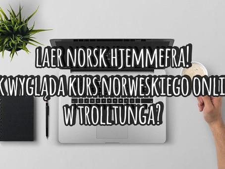 Lær norsk hjemmefra! Jak wygląda kurs norweskiego online w Trolltunga?
