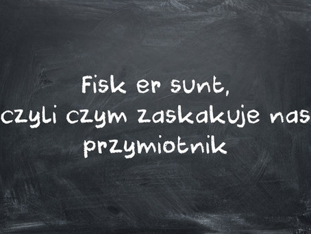 Fisk er sunt, czyli czym zaskakuje nas przymiotnik