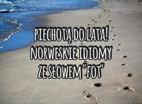 """Piechotą do lata, czyli norweskie idiomy ze słowem """"fot"""""""