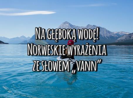 """Na głęboką wodę! Norweskie wyrażenia ze słowem """"vann"""""""