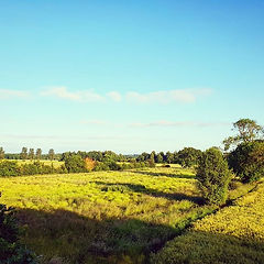 🌅 #norfolk #countrysidephotography #sum