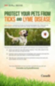 Lyme-Disease-Spring-Poster_001.jpg