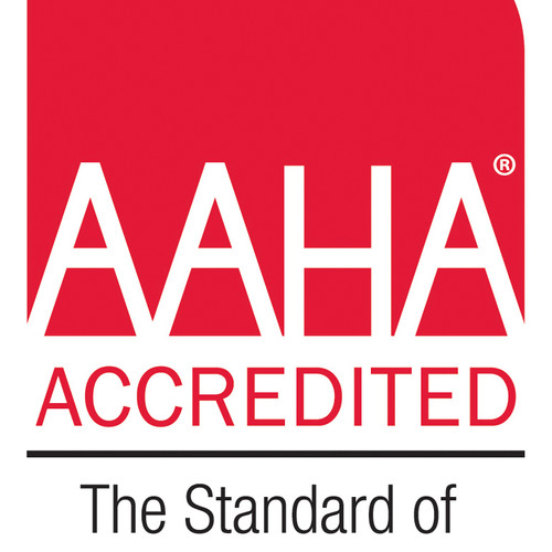 Healthy Pets, Newsletter From AAHA