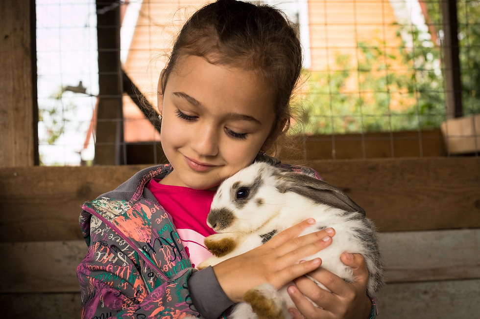 Shutterstock, Girl with Rabbit.jpg