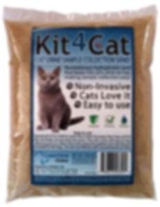 kit4cat1.jpg