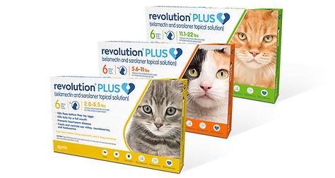 Revolution-Plus.jpg