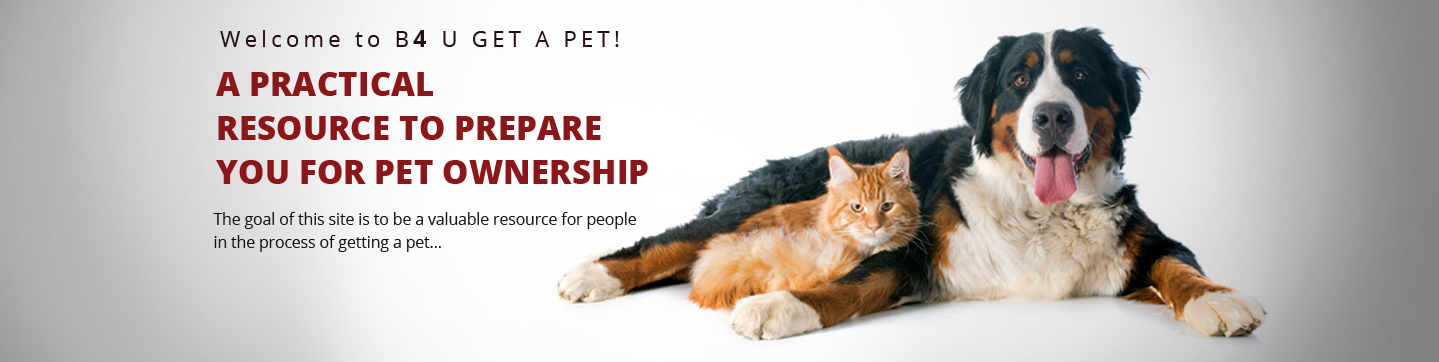 pet ownership.png