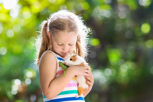 Shutterstock, Child playing with guinea