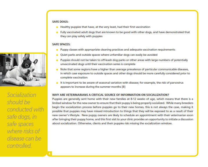 Puppy-socialization-bulletin_006.png