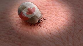 Tick Talk Canada.jpg